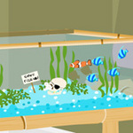 lovely fish room escape.jpg